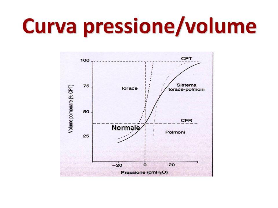 Curva pressione/volume
