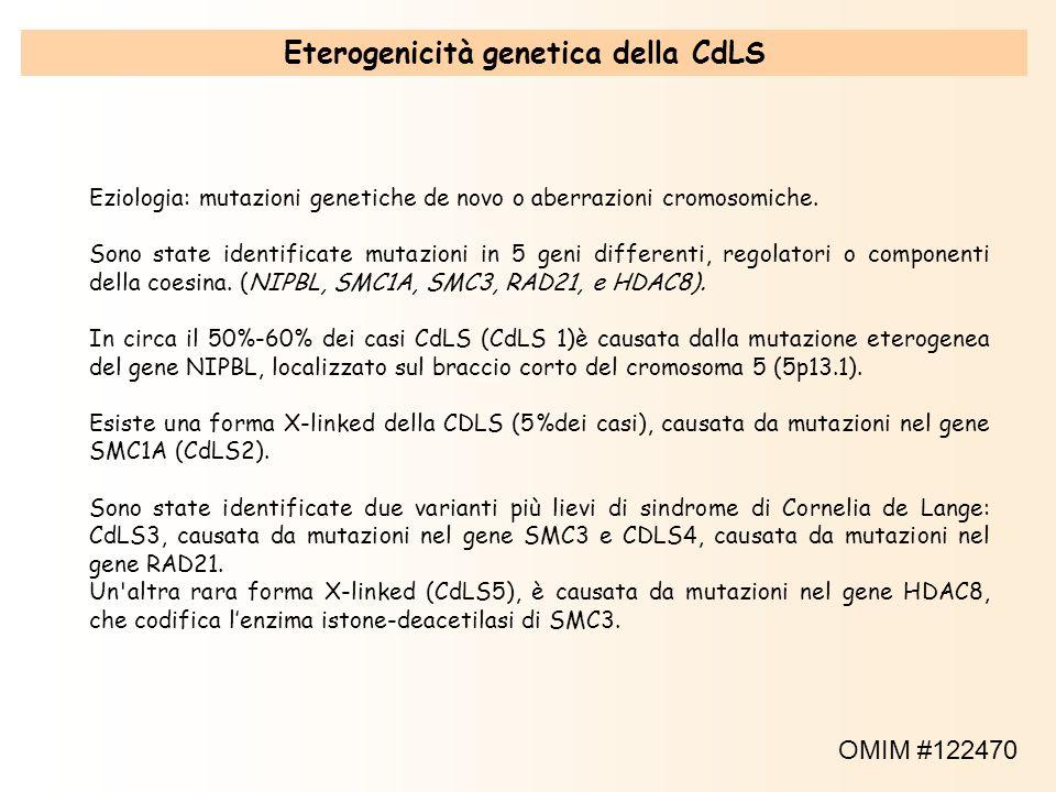 Eterogenicità genetica della CdLS