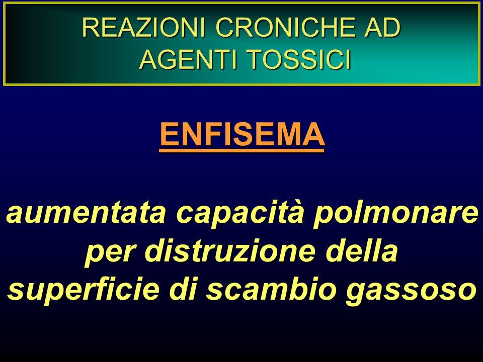 REAZIONI CRONICHE AD AGENTI TOSSICI. ENFISEMA.