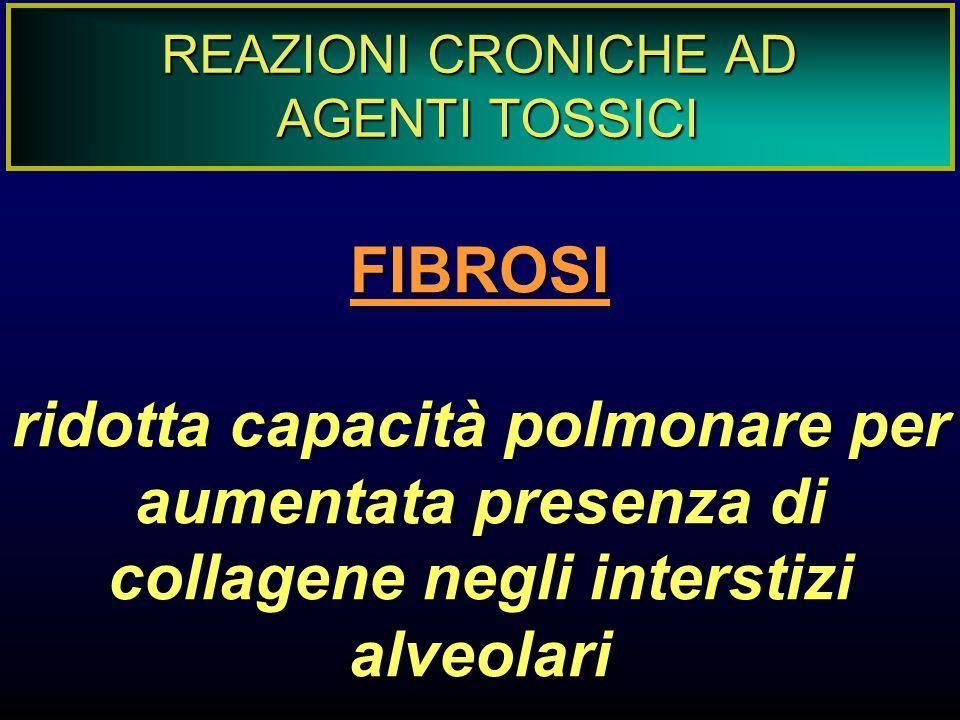 REAZIONI CRONICHE AD AGENTI TOSSICI. FIBROSI.
