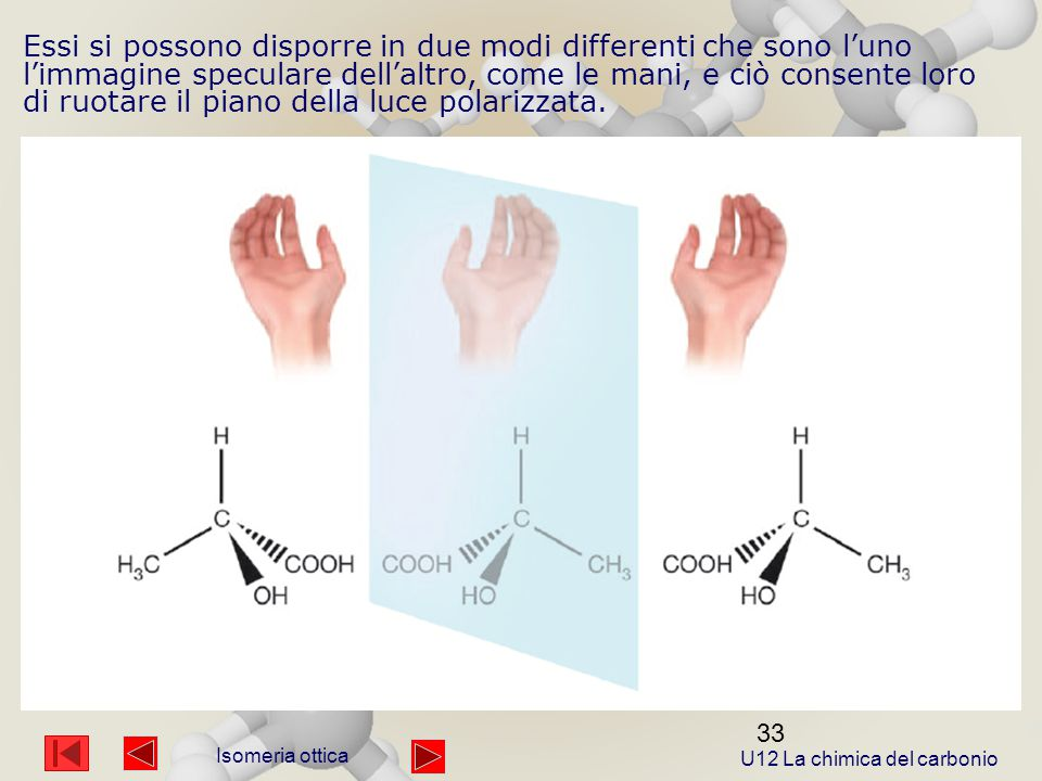 U12 La chimica del carbonio