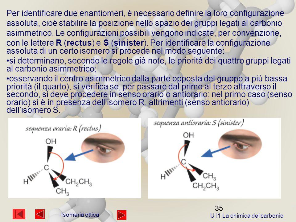 U I1 La chimica del carbonio