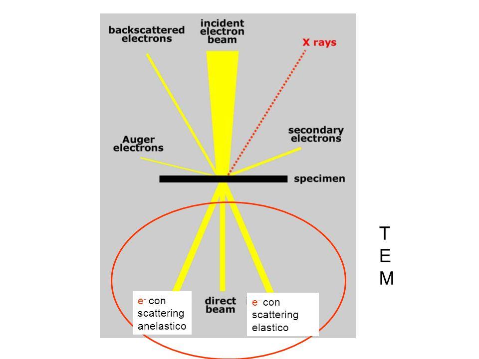 T E M e- con scattering anelastico e- con scattering elastico