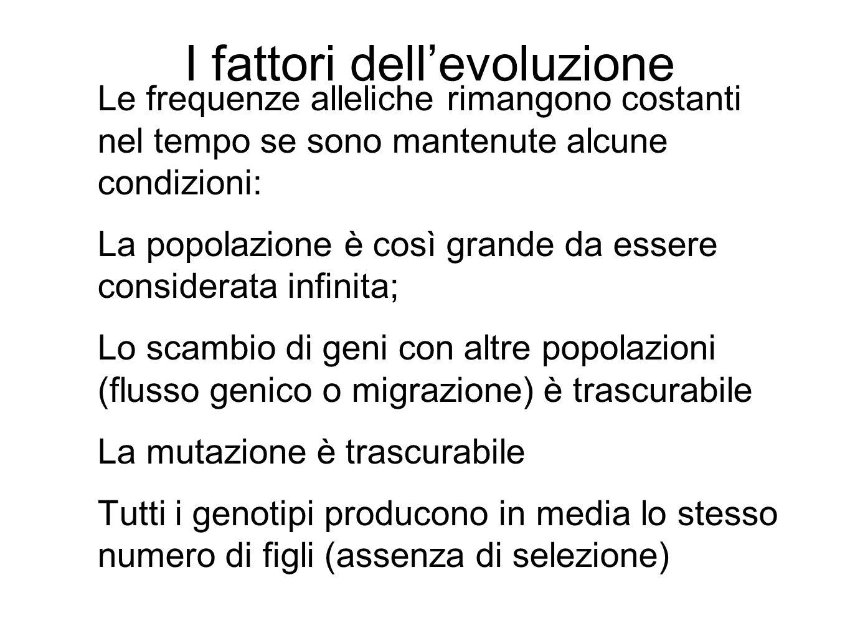 I fattori dell'evoluzione