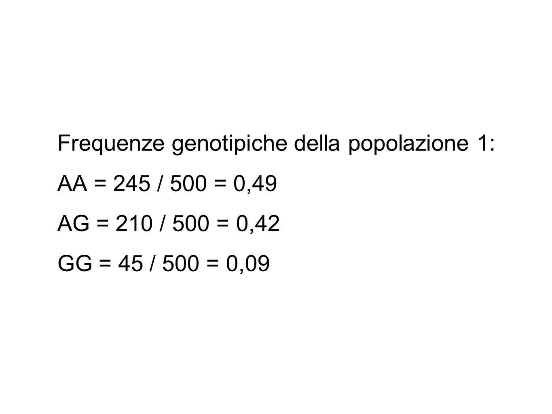 Frequenze genotipiche della popolazione 1: AA = 245 / 500 = 0,49 AG = 210 / 500 = 0,42 GG = 45 / 500 = 0,09
