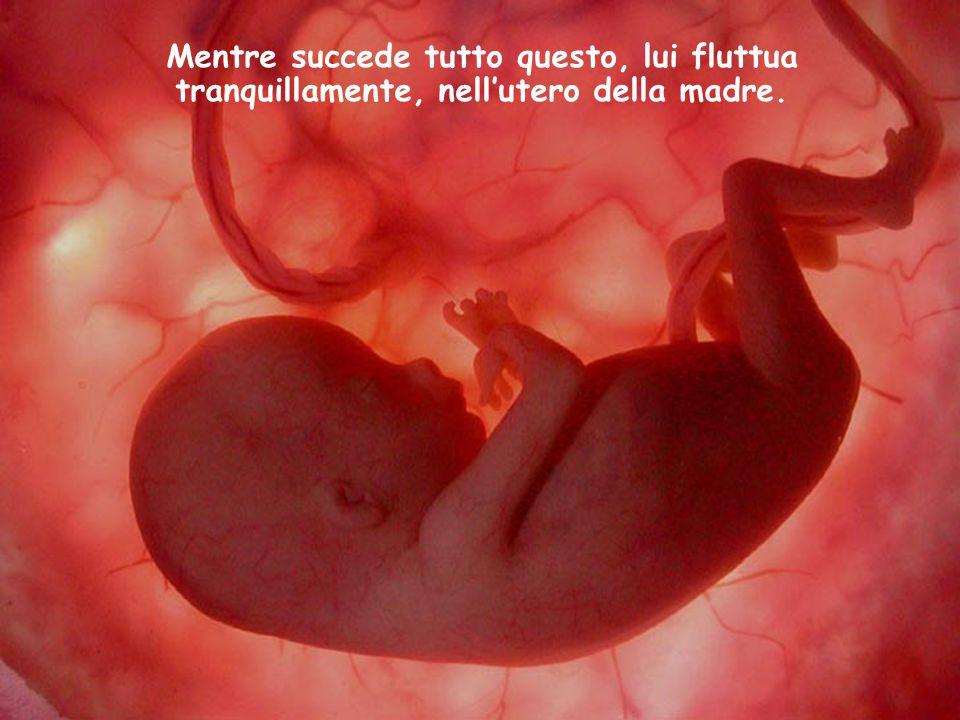 Mentre succede tutto questo, lui fluttua tranquillamente, nell'utero della madre.