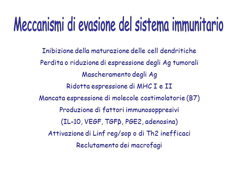 Meccanismi di evasione del sistema immunitario