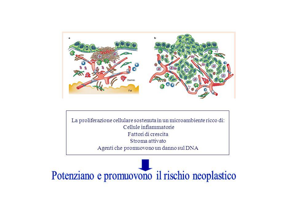 Potenziano e promuovono il rischio neoplastico