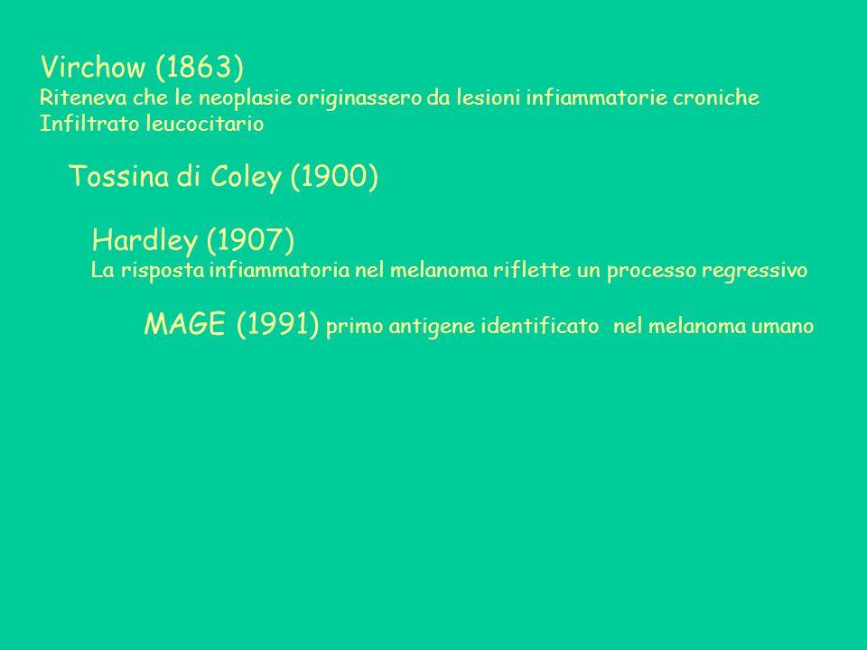 MAGE (1991) primo antigene identificato nel melanoma umano