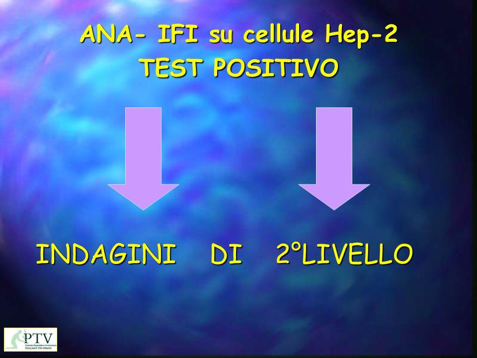 ANA- IFI su cellule Hep-2 TEST POSITIVO