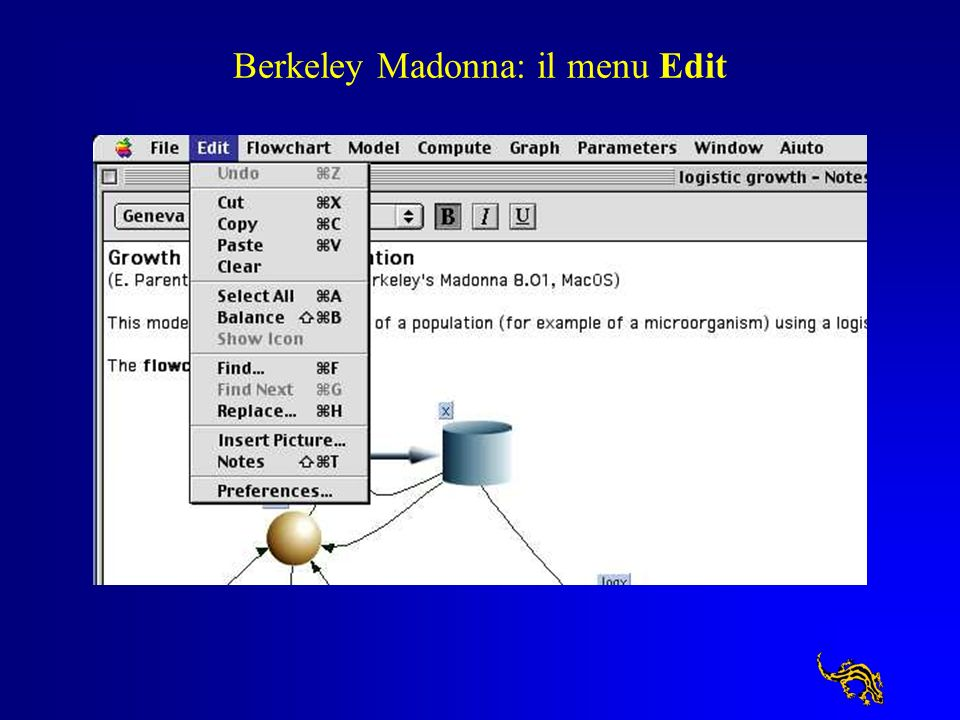Berkeley Madonna: il menu Edit