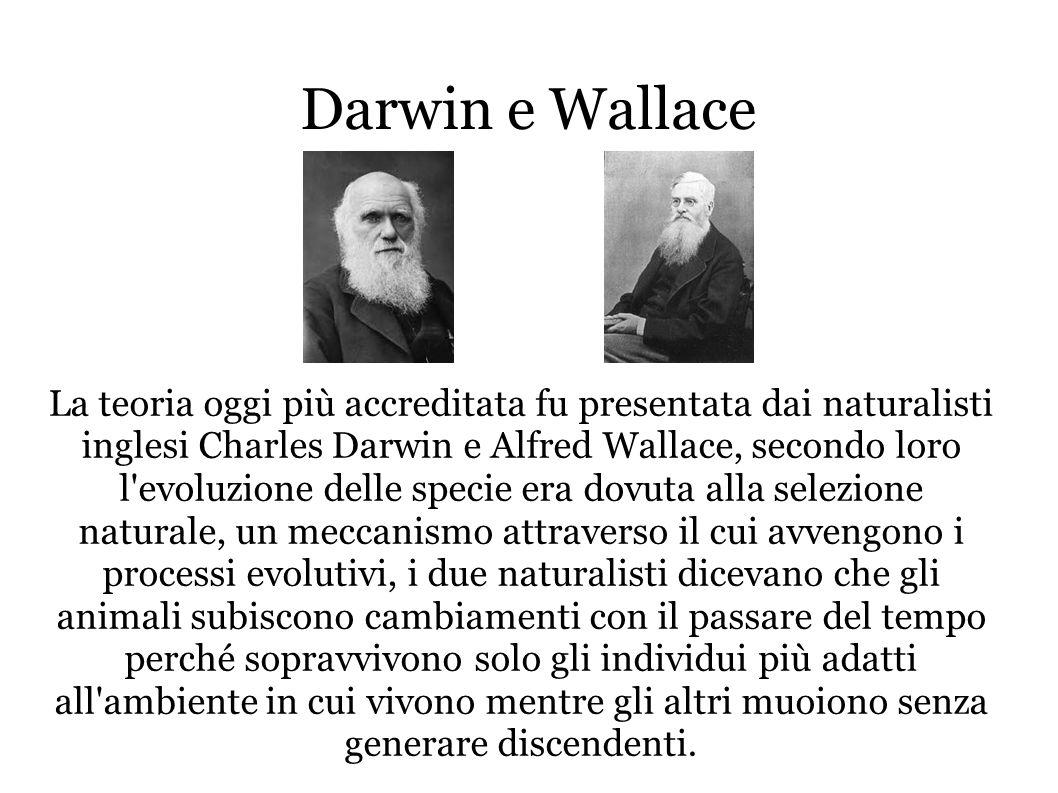 Darwin e Wallace