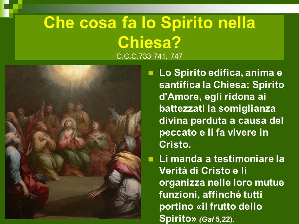 Che cosa fa lo Spirito nella Chiesa C.C.C.733-741; 747