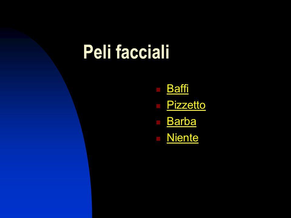 Peli facciali Baffi Pizzetto Barba Niente