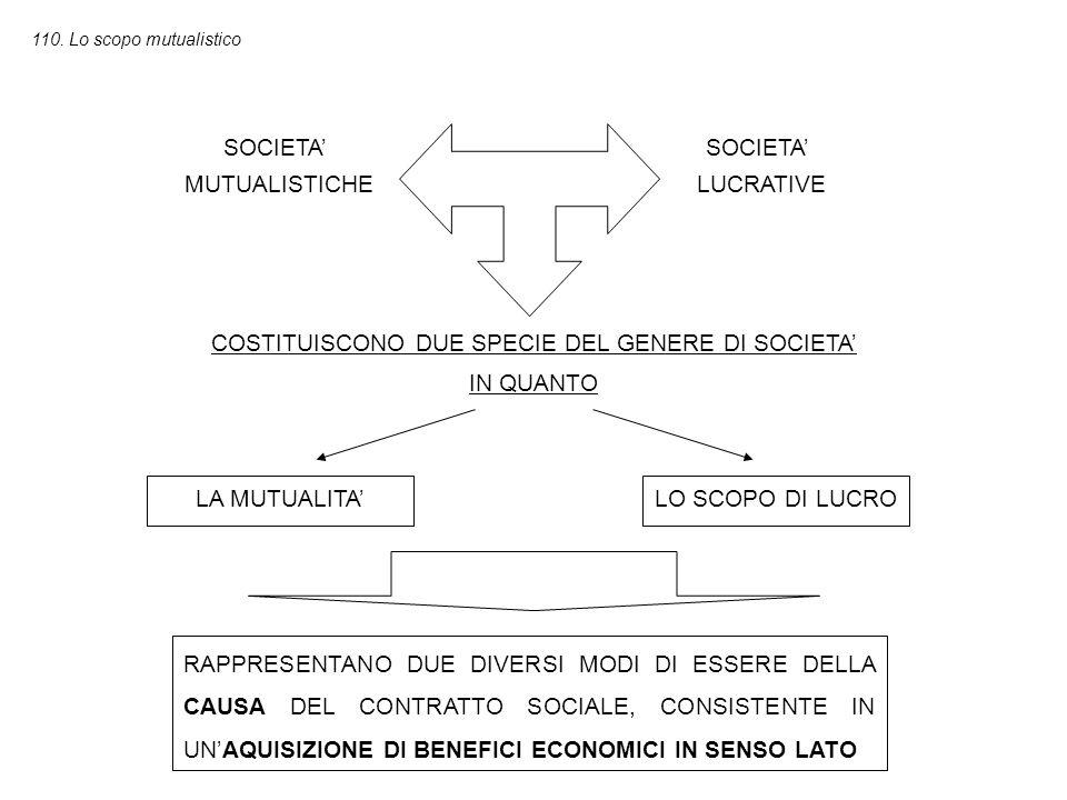 COSTITUISCONO DUE SPECIE DEL GENERE DI SOCIETA'