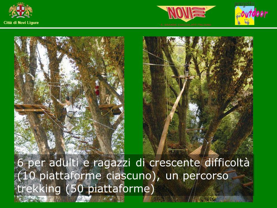 6 per adulti e ragazzi di crescente difficoltà (10 piattaforme ciascuno), un percorso trekking (50 piattaforme)