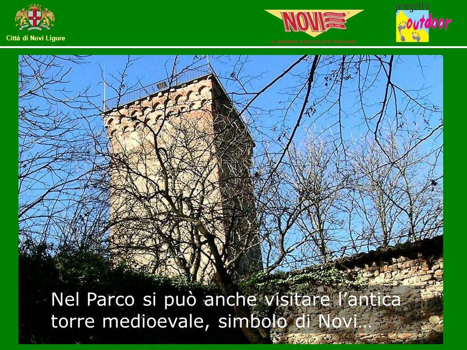 Nel Parco si può anche visitare l'antica torre medioevale, simbolo di Novi…