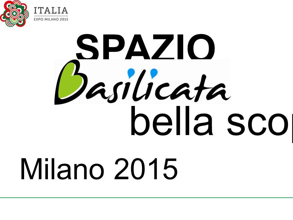 SPAZIO bella scoperta! Milano 2015