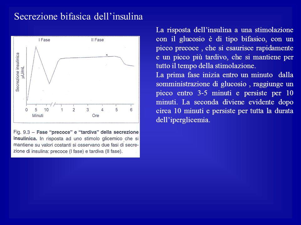 Secrezione bifasica dell'insulina