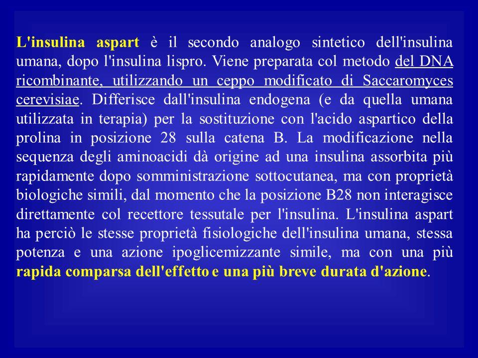 L insulina aspart è il secondo analogo sintetico dell insulina umana, dopo l insulina lispro.