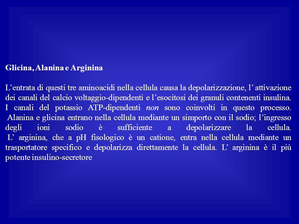 Glicina, Alanina e Arginina