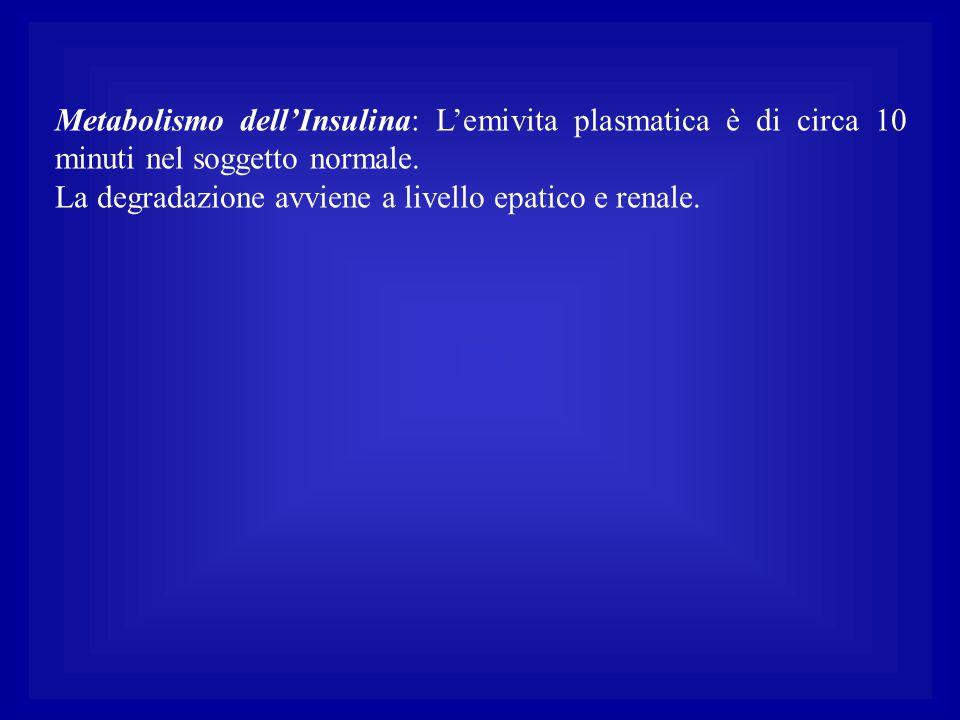 Metabolismo dell'Insulina: L'emivita plasmatica è di circa 10 minuti nel soggetto normale.