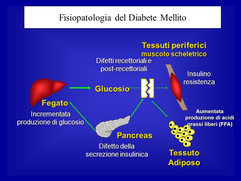 Fisiopatologia del Diabete Mellito