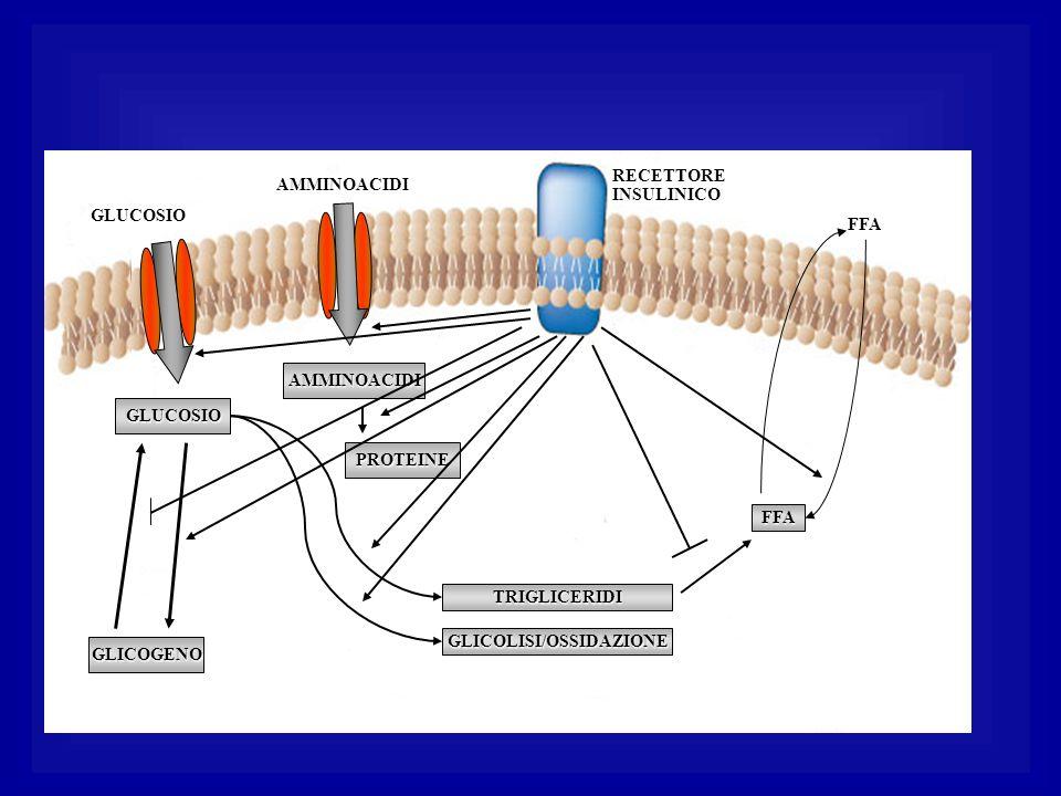 GLICOLISI/OSSIDAZIONE