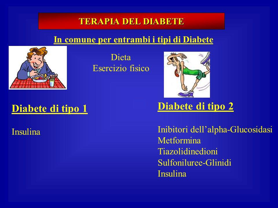 Diabete di tipo 2 Diabete di tipo 1 TERAPIA DEL DIABETE