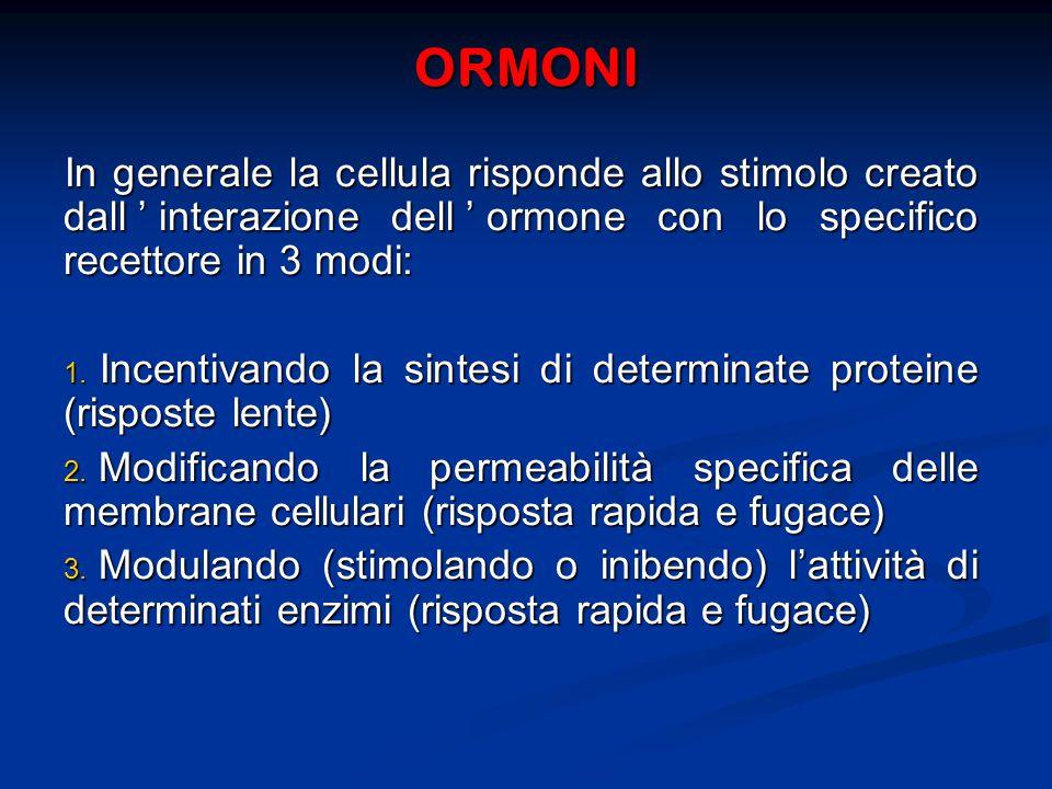 ORMONI In generale la cellula risponde allo stimolo creato dall'interazione dell'ormone con lo specifico recettore in 3 modi:
