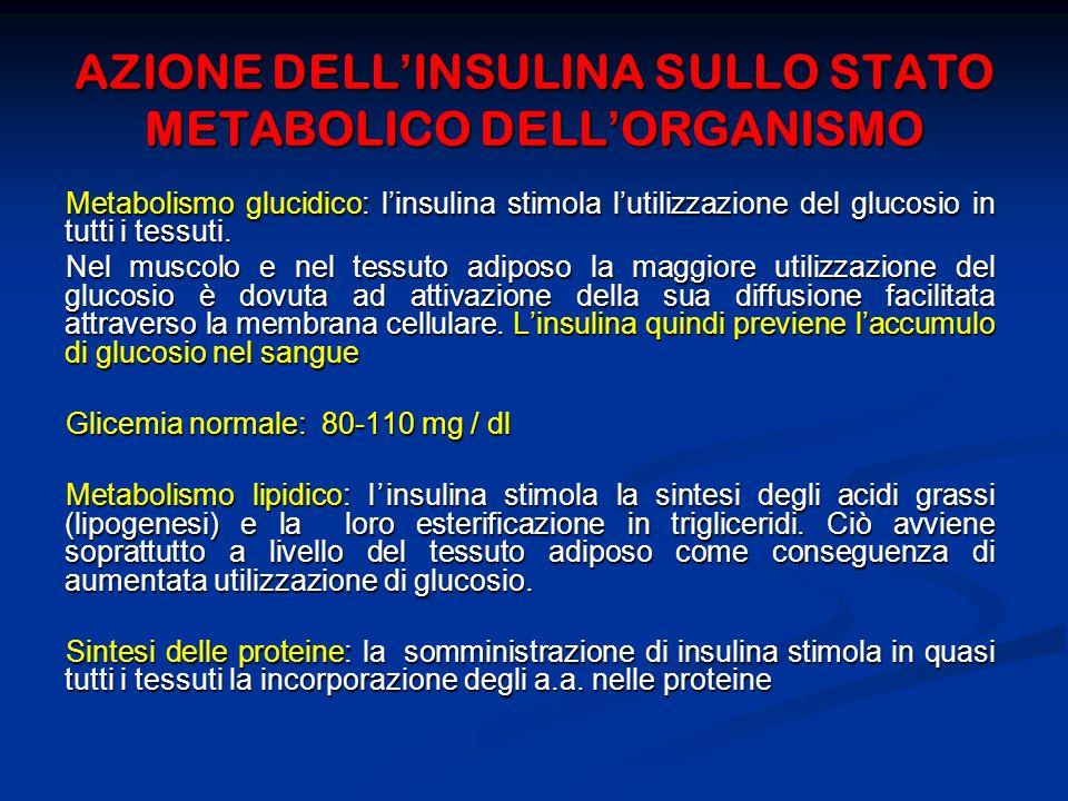 AZIONE DELL'INSULINA SULLO STATO METABOLICO DELL'ORGANISMO
