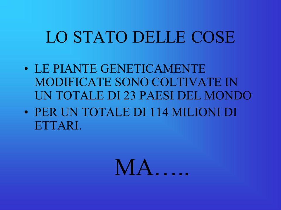 LO STATO DELLE COSE LE PIANTE GENETICAMENTE MODIFICATE SONO COLTIVATE IN UN TOTALE DI 23 PAESI DEL MONDO.