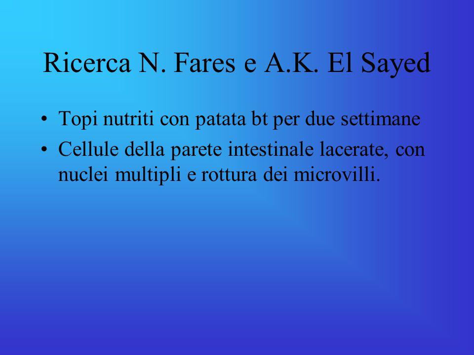 Ricerca N. Fares e A.K. El Sayed