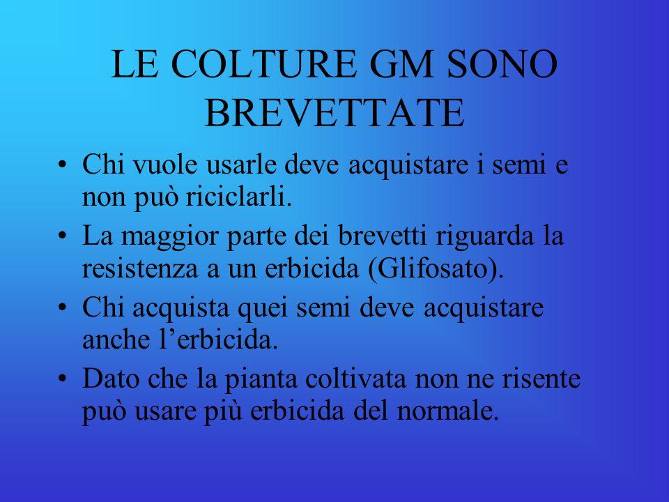 LE COLTURE GM SONO BREVETTATE