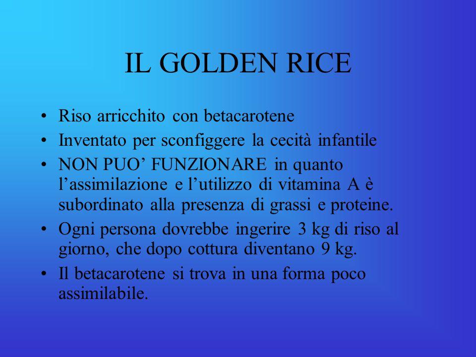 IL GOLDEN RICE Riso arricchito con betacarotene
