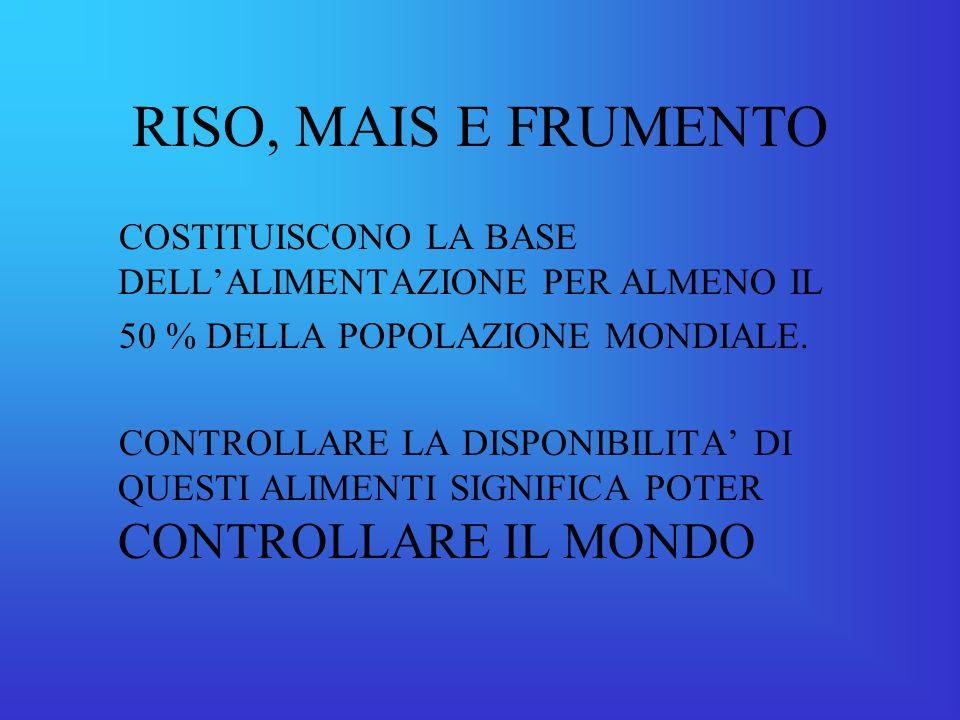 RISO, MAIS E FRUMENTO COSTITUISCONO LA BASE DELL'ALIMENTAZIONE PER ALMENO IL. 50 % DELLA POPOLAZIONE MONDIALE.