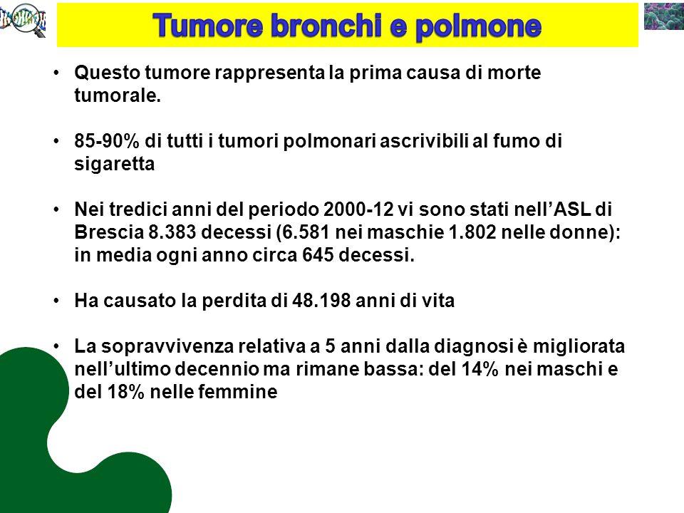 Tumore bronchi e polmone