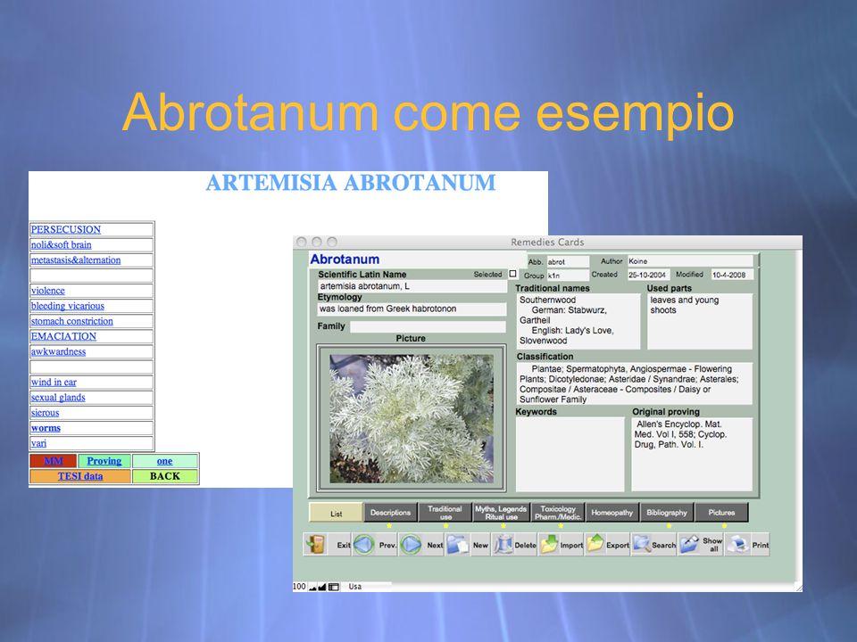 Abrotanum come esempio