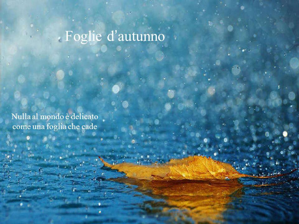 Foglie d'autunno Nulla al mondo è delicato come una foglia che cade