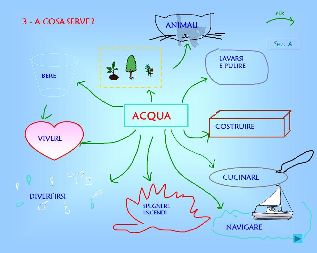 ACQUA 3 - A COSA SERVE ANIMALI Sez. A COSTRUIRE VIVERE CUCINARE