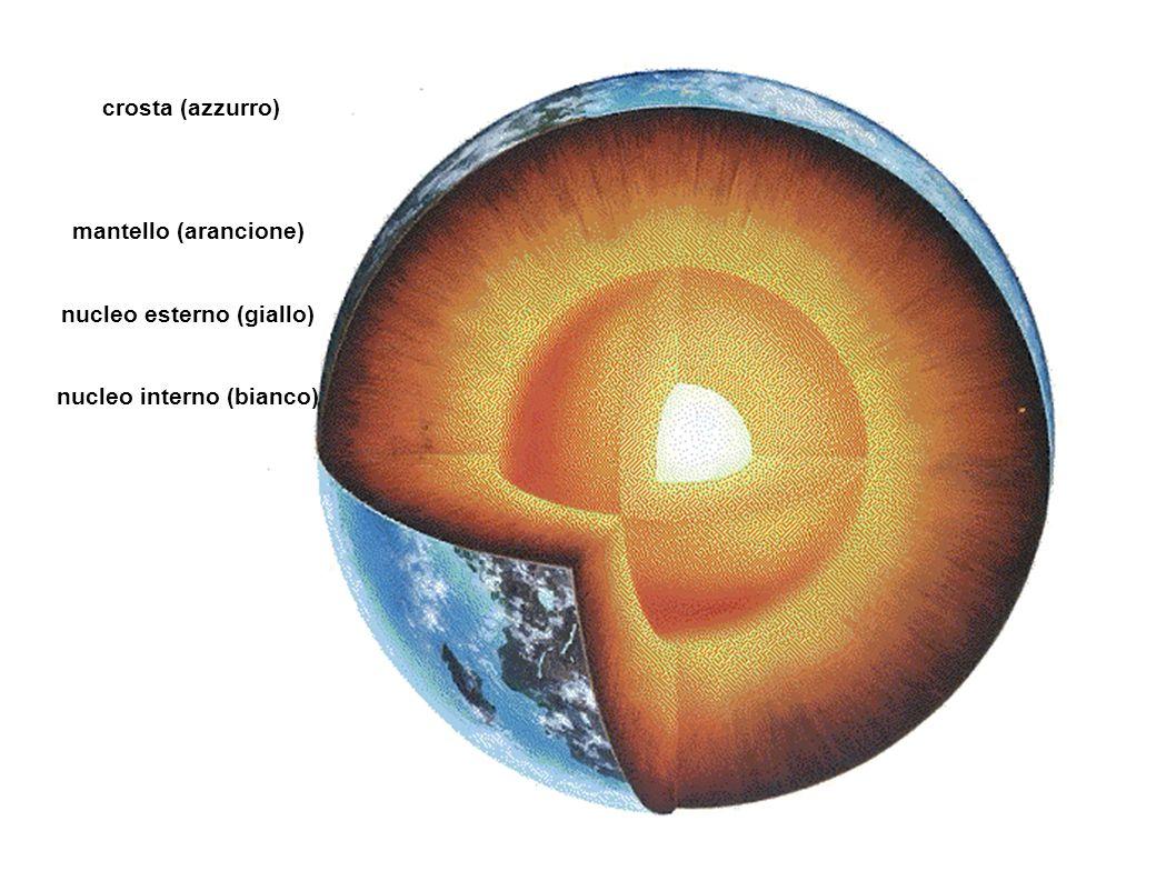 nucleo esterno (giallo) nucleo interno (bianco)