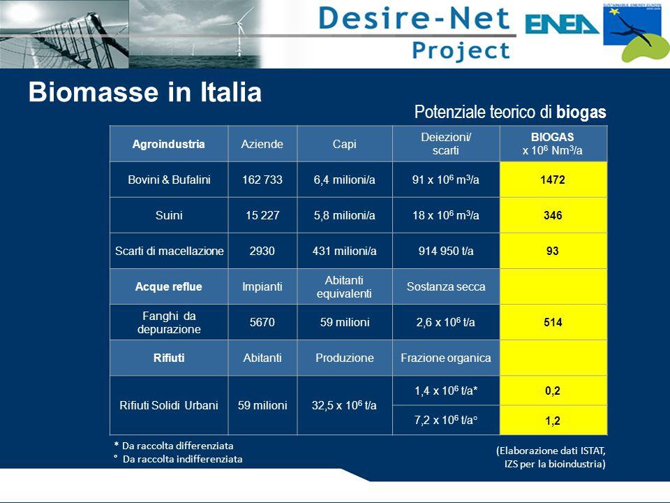 Biomasse in Italia Potenziale teorico di biogas Agroindustria Aziende