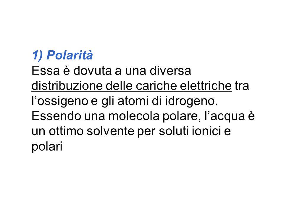 1) Polarità
