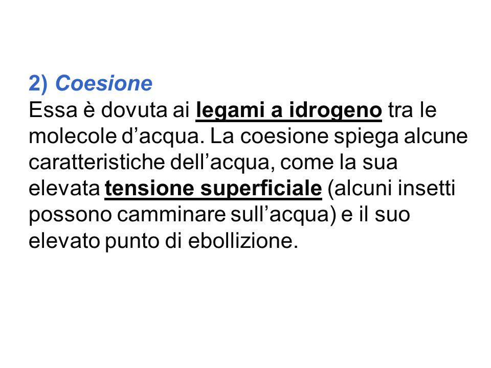 2) Coesione