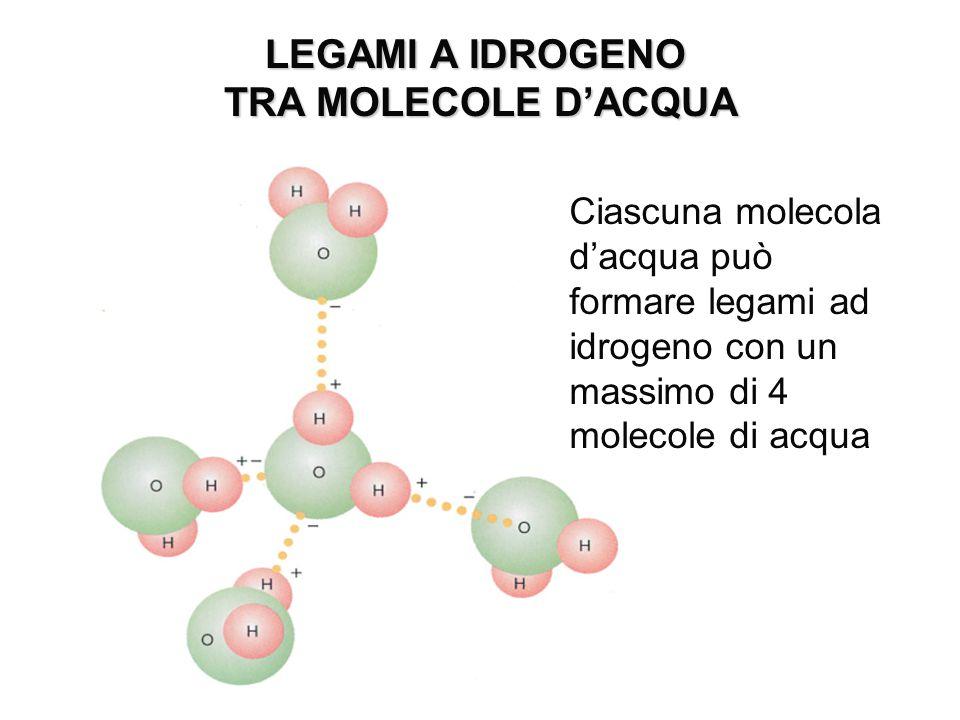 LEGAMI A IDROGENO TRA MOLECOLE D'ACQUA