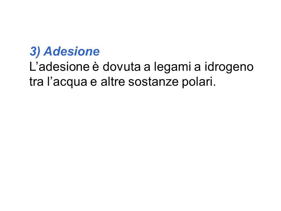 3) Adesione L'adesione è dovuta a legami a idrogeno tra l'acqua e altre sostanze polari.