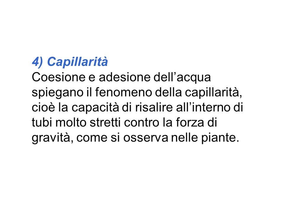 4) Capillarità