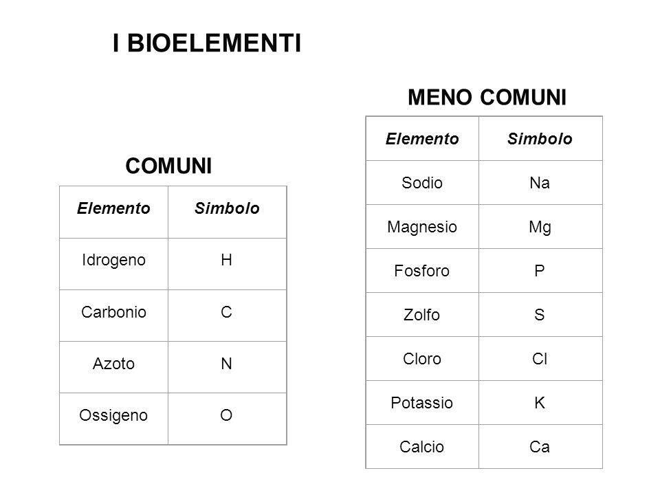 I BIOELEMENTI MENO COMUNI COMUNI Elemento Simbolo Sodio Na Magnesio Mg
