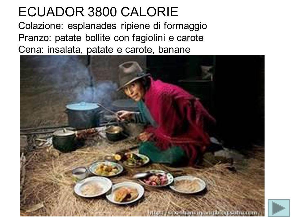 ECUADOR 3800 CALORIE Colazione: esplanades ripiene di formaggio Pranzo: patate bollite con fagiolini e carote Cena: insalata, patate e carote, banane