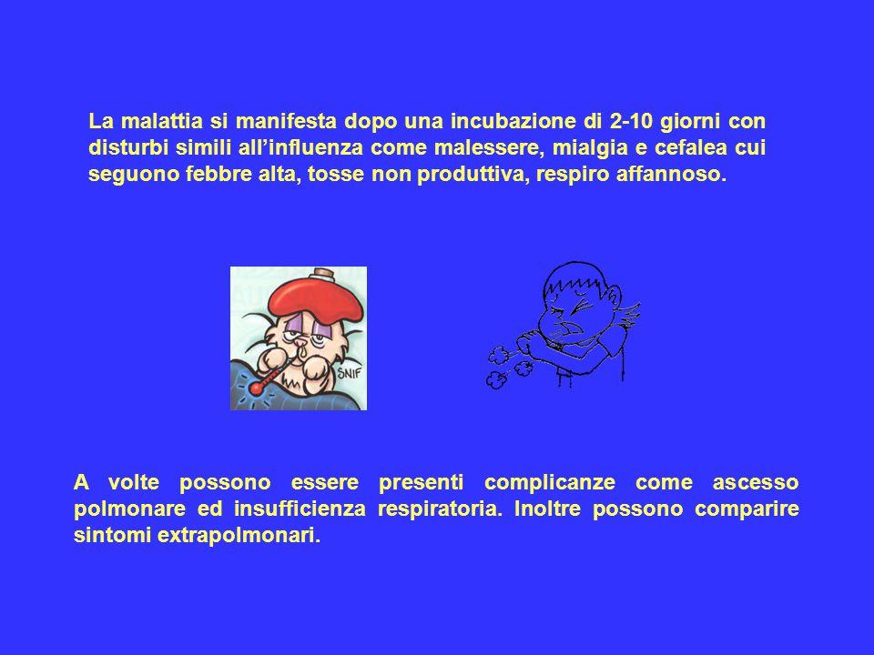 La malattia si manifesta dopo una incubazione di 2-10 giorni con disturbi simili all'influenza come malessere, mialgia e cefalea cui seguono febbre alta, tosse non produttiva, respiro affannoso.